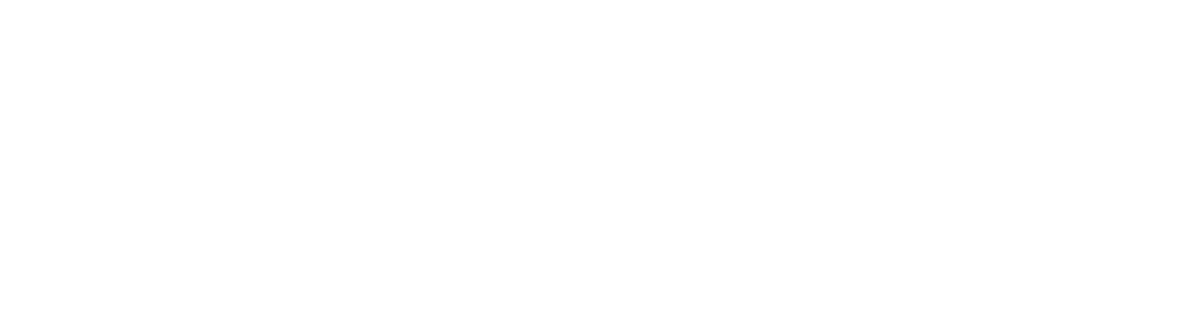 intelli.tours logo